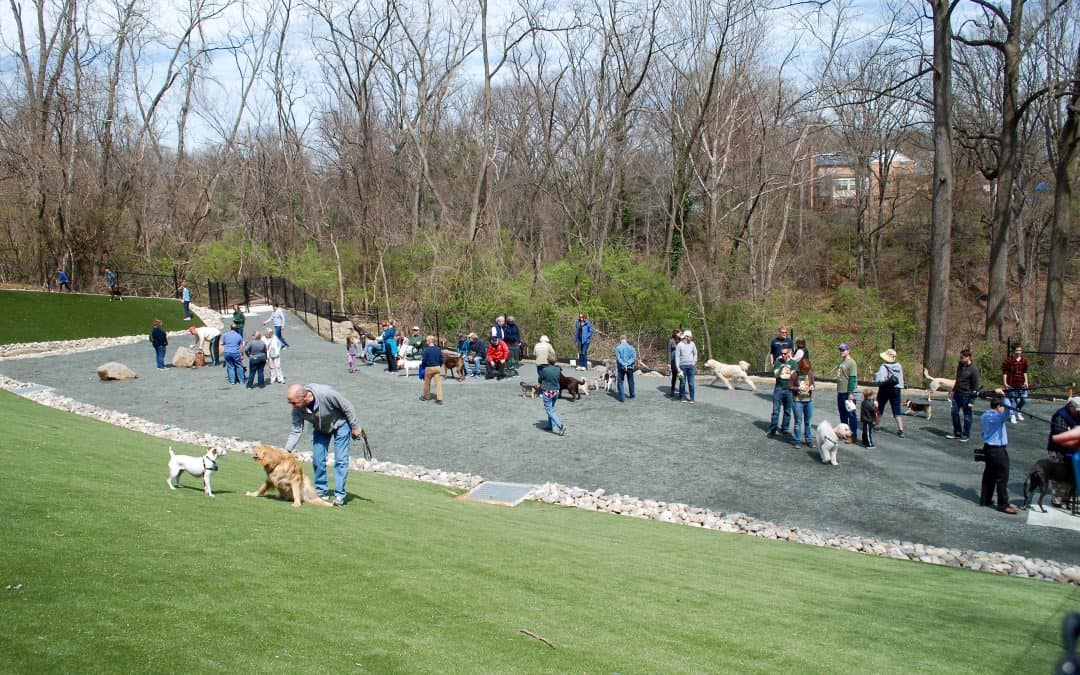 Takoma Park opens its first official dog park