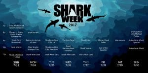 Silver Spring Comes Alive for Shark Week