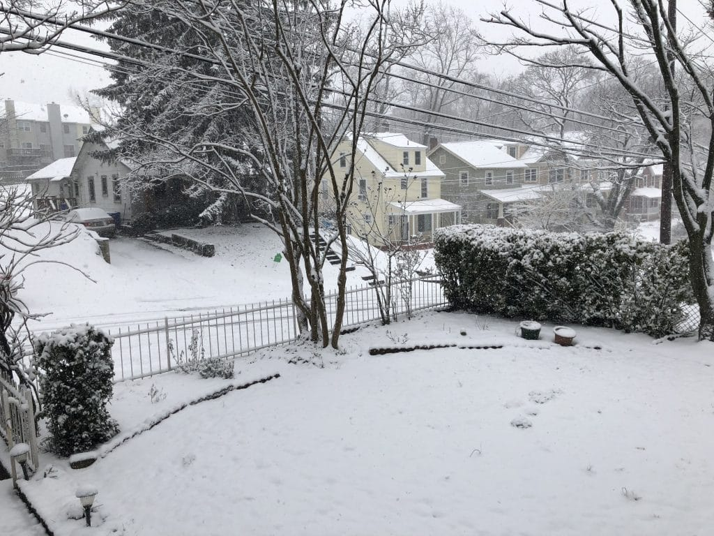 Heavy Snow Snarls Montgomery County