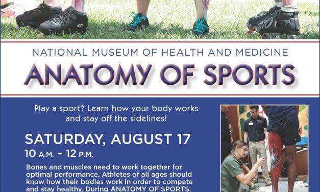 Anatomy of Sports