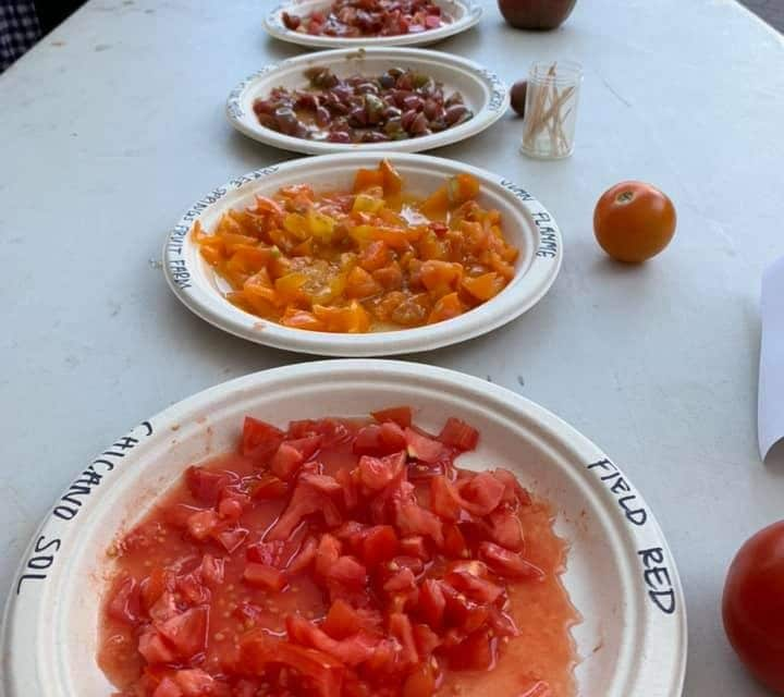 """Red Grape"" Wins Tomato Tasting Event"