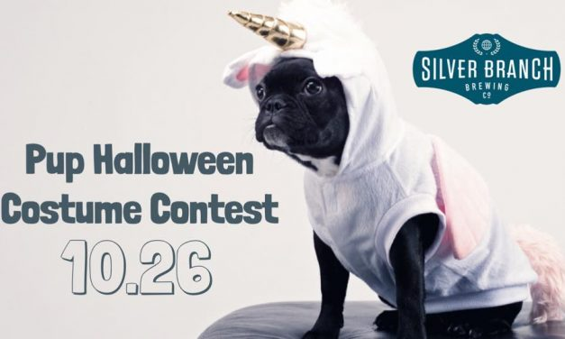 Puppy Costume Contest